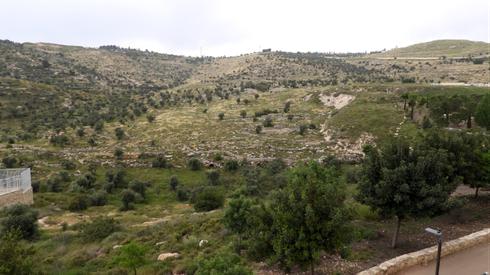 השטח המתוכנן להרחבת הר חומה