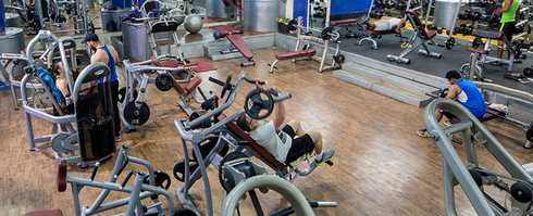 City gym. צילום: מתוך אתר חדר הכושר