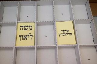 בחירות בירושלים. צילום: יואב דודקביץ'