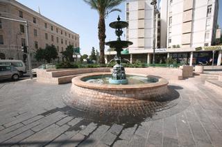 הדקל ליד המזרקה בכיכר   צילום: שלומי כהן