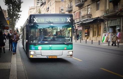 אוטובוס. צילום: אדווה חולי