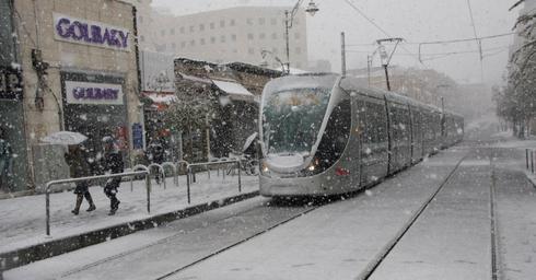 יערם על הקרקע? שלג בירושלים. צילום ארכיון: לירן תמרי