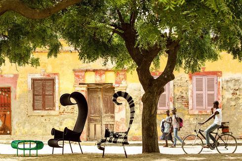 """רון ארד עיצב כיסאות בהשראת אפריקה, Tollman's, Moroso , צילום: יח""""צ"""