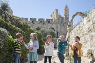 """יום הבחירות מוזיאון מגדל דוד. צילום: יח""""צ"""